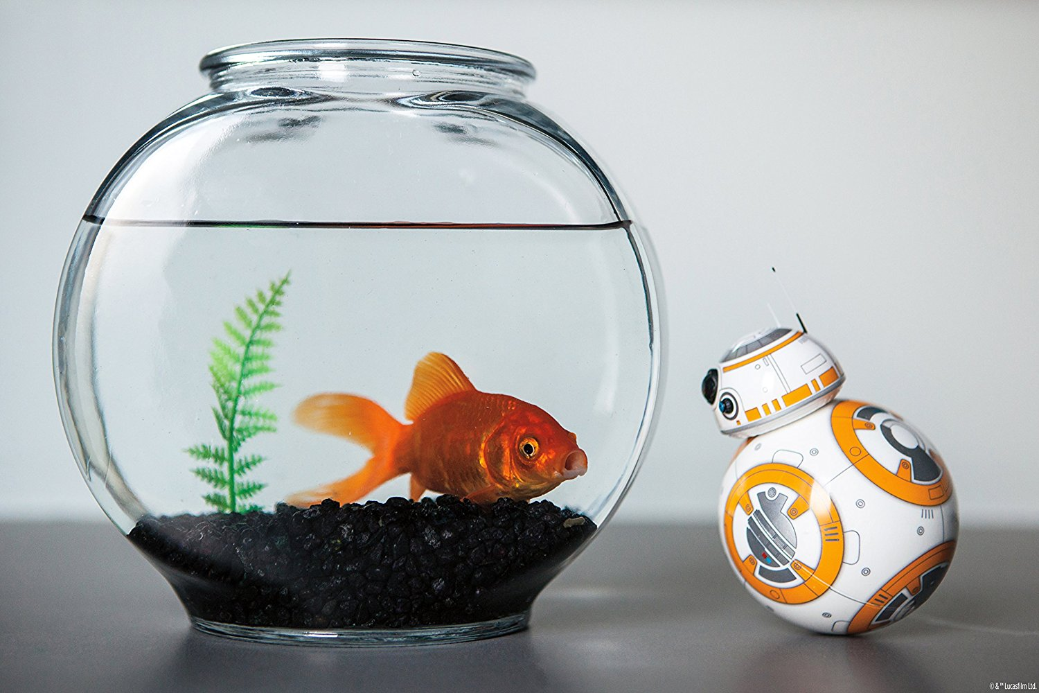starwars_bb8_fishtank